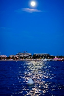 Moonlight at Cannes