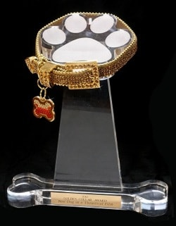 Golden Collar Awards trophy