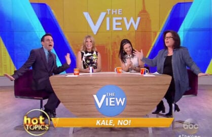 "From L to R, Mario Cantone, Nicolle Wallace, Stacy London, Rosie O'Donnell on ""The View"""