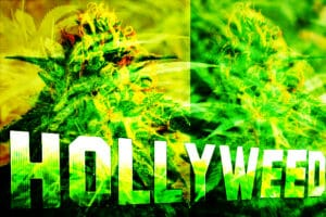 Pot_Hollyweed
