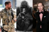 Bradley Cooper, Virunga, Wes Anderson
