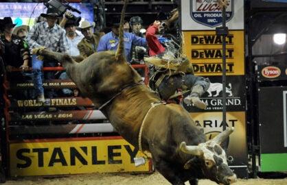 professional-bull-riders