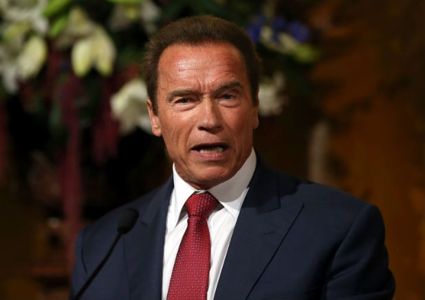 arnold schwarzenegger - photo #21