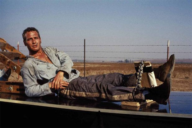 cool hand luke 100 percent fresh rotten tomatoes