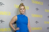 MELBOURNE, AUSTRALIA - JULY 21: Actor Amy Schumer arrives at the Trainwreck premiere at Village Jam Factory on July 21, 2015 in Melbourne, Australia. (Photo by Luis Ascui/Getty Images)