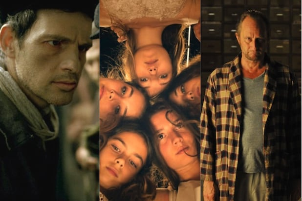 """""""Son of Saul,"""" """"Mustang,"""" """"The Brand New Testament"""""""