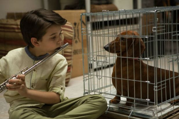 Wiener-Dog movie