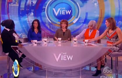 the-view-1-4-16