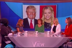 the view donald trump megyn kellythe view donald trump megyn kelly
