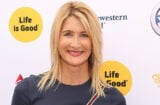 LOS ANGELES, CA - SEPTEMBER 12: Actress Laura Dern attends the LA Loves Alex's Lemonade event supported by Life Is Good at UCLA on September 12, 2015 in Los Angeles, California. (Photo by Jesse Grant/Getty Images for Life is Good)