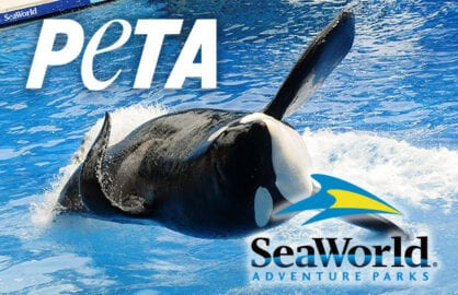 sea world peta