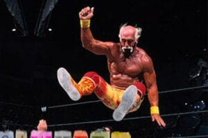 Hulk Hogan Gawker Smack Down