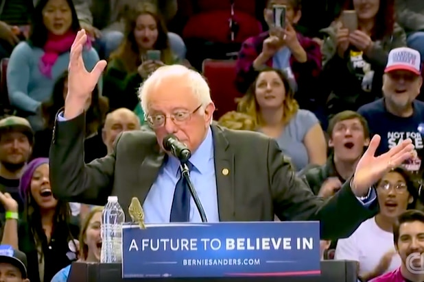 Meet #BirdieSanders, the Winged Bernie Sanders Supporter Who Won Over the Internet