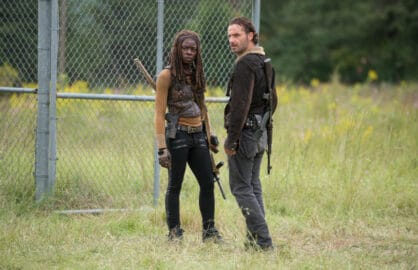 the walking dead danai gurira andrew lincoln