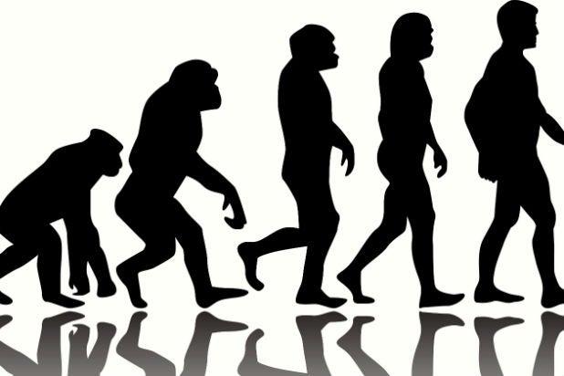 curt schilling evolution