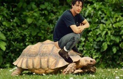 keanu reeves turtle