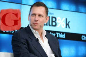 Gawker Peter Thiel Supreme Court