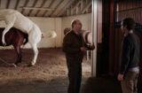Silicon Valley Horse Sex Scene