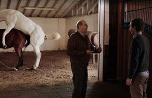 Silicon Valley Horse Sex Scene