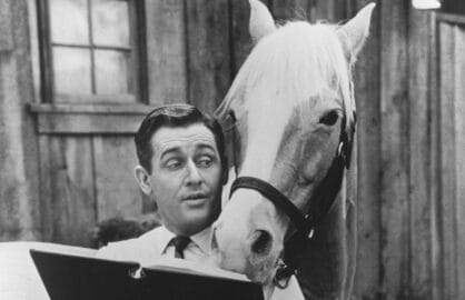 alan young mister ed