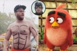 neighbors 2 angry birds movie captain america