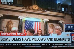 Democratic Sit In