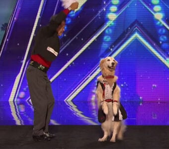 Americas Got Talent Auditions