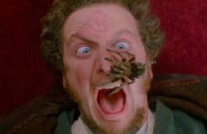 Daniel Stern Home Alone Spider