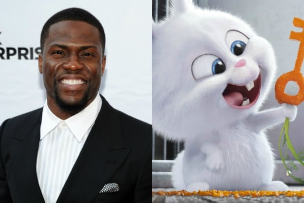 The 13 Star Studded Voices Behind The Secret Life Of Pets