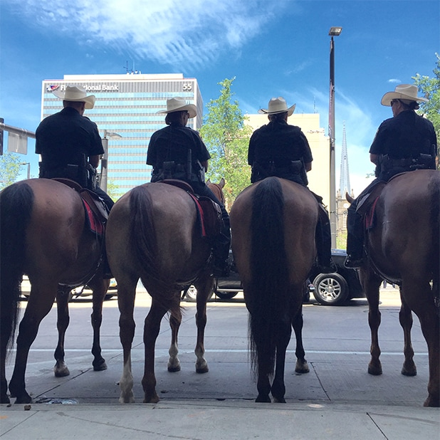 Republican National Convention Mounted Police