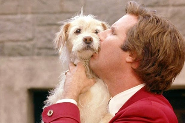 Anchorman: The Legend of Ron Burgundy Baxter the dog