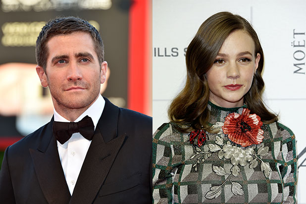 Jake Gyllenhaal Carey Mulligan wildlife