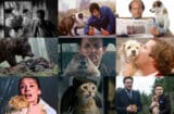 scene stealing animals split baxter anchorman keanu groundhog day the interview dog cat bear the revenant