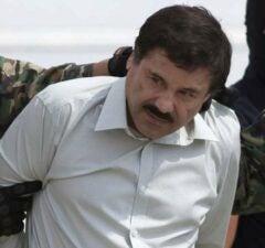 el chapo drug arrest