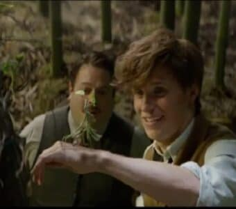 fantastic beasts and where to find them creatures