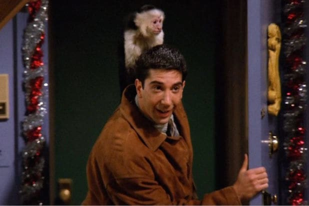 marcel friends david schwimmer