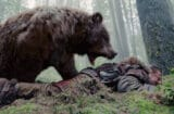 the revenant bear leonardo dicaprio