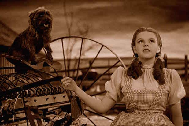 wizard of oz toto dorothy Judy Garland
