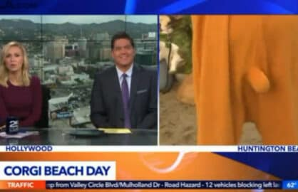 Masturbation Joke Gives Local News Team a Serious Case of the