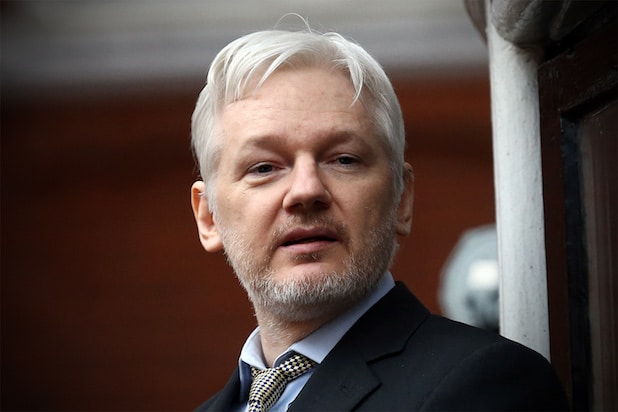 Julian Assange's Twitter account has vanished