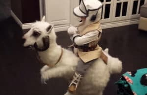 Little Jedi Tauntaun