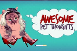 Awesome Pet Thoughts Jukin Media Comcast Watchable