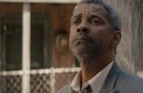 fences new trailer