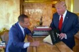 harvey levin donald trump