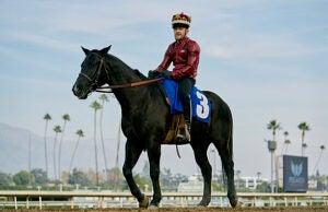 conor-mcgregor-on-horseback