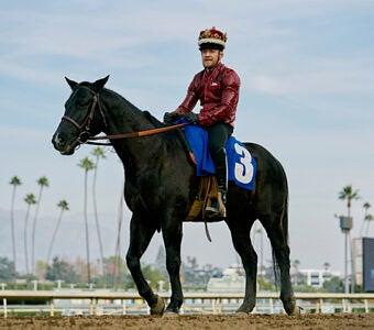 Conor-McGregor-on-horseback--340x300.jpg
