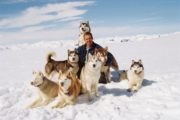 Paul Walker eight below zero