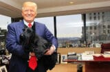 Donald Trump and Sadie