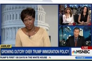 joy reid immigration