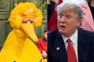 Donald Trump PBS